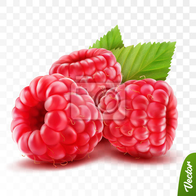Fototapeta 3d realistic isolated vector whole and slice of raspberry with leaves, editable handmade mesh