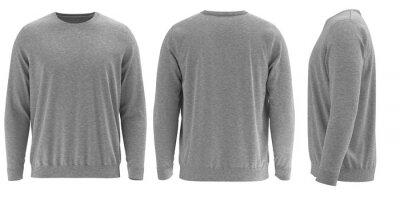 Fototapeta 3D rendered Long-sleeve Round neck sweatshirt
