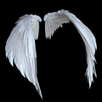 Fototapeta 3D Rendered White Fantasy Angel Wings Isolated On Black Background - 3D Illustration