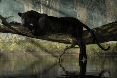 Fototapeta A black panther sits on a log over a small calm jungle pond.  Sunlight streams down through the forest canopy to illuminate the wild cat. 3D Rendering