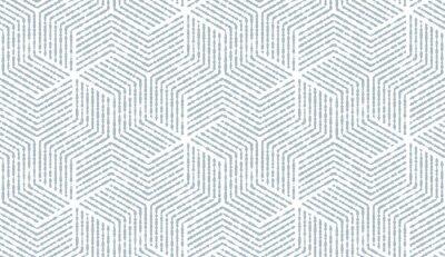 Fototapeta Abstrakcyjny wzór geometryczny z paskami, linie. Bezszwowe tło wektor. Biało-niebieski ornament. Prosta grafika kratowa