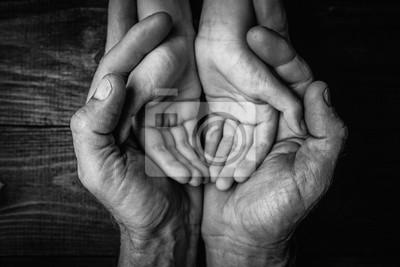 Fototapeta Adult hands holding kid hands