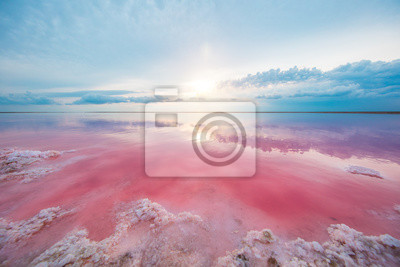 Fototapeta aerial view of pink lake and sandy beach