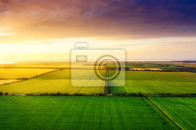 Fototapeta Aerial view on the field during sunset. Landscape from drone. Agricultural landscape from air. Agriculture - image