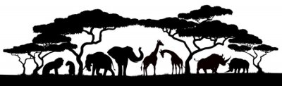 Fototapeta African safari animals and trees in silhouettes scene