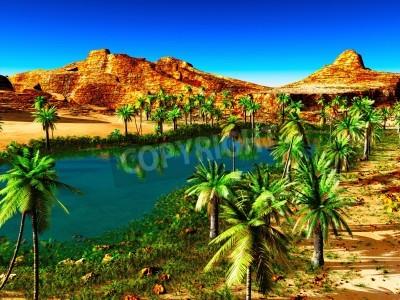 Fototapeta Afrykańska oaza - piękny naturalny krajobraz