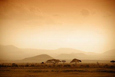 Fototapeta Afrykańska Sawanna o wschodzie słońca