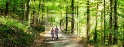 Fototapeta Aktivurlaub im Frühling bei einer Wanderung im Wald