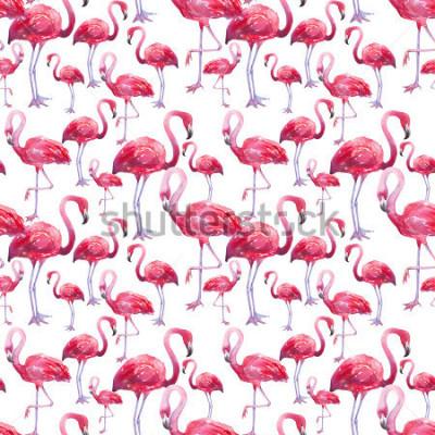 Fototapeta akwarela ptak egzotyczne flamingo