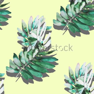Fototapeta Akwarela rośliny ilustracja wzór