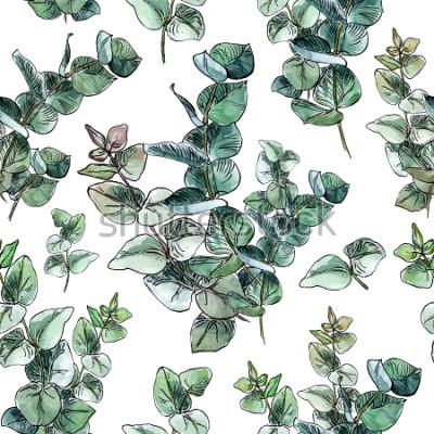 Fototapeta Akwarela seemless wzór z dziecka błękitnego eukaliptusa liśćmi i gałąź na białym tle