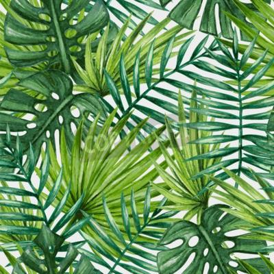 Fototapeta Akwarela tropikalnych liści palmowych szwu wzór