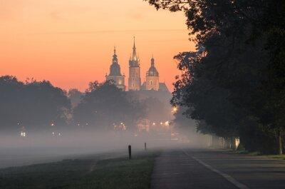 Fototapeta Aleja wzdłuż łąki Błoniach w Krakowie, w Polsce, z kościoła i ratusza wieży Mariackiej w tle, mglisty poranek