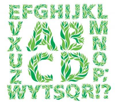 Fototapeta Alfabet zielone liście