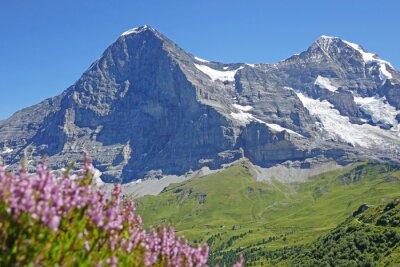 Fototapeta Alpen, eiger, berner oberland, schweiz