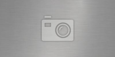 Fototapeta Aluminum Steel Iron Vector Texture Background