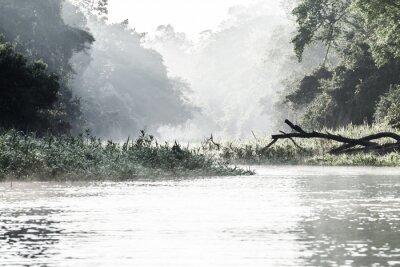 Fototapeta Amazonka w godzinach porannych