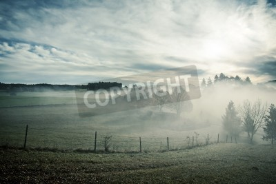 Fototapeta An image of a nice misty scenery