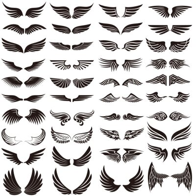 Fototapeta Angel wings icon vector set. fly illustration sign collection. pilot symbol.