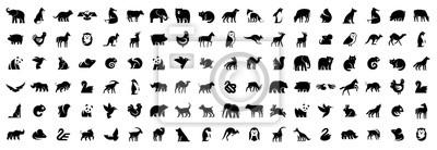 Fototapeta Animals logos collection. Animal logo set. Isolated on White background