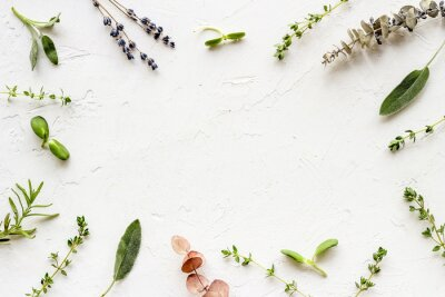 Fototapeta Apothecary of natural wellness and self-care. Herbs and medicine on white background top view frame copy space
