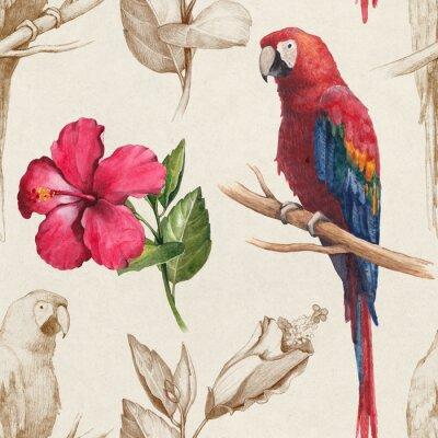 Fototapeta Ara i kwiat hibiskusa rysunki. Jednolite wzór