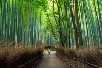 Fototapeta Arashiyama Bamboo Grove