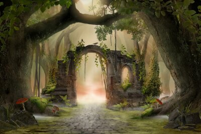Fototapeta Archway in an enchanted fairy forest landscape, misty dark mood, can be used as background