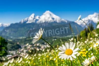Fototapeta Artystyczne widzenia krajobrazu w Alpach Bawarskich z pięknymi kwiatami i rozmyte góry Watzmann w tle na wiosnę, Nationalpark Berchtesgaden, Bawaria, Niemcy