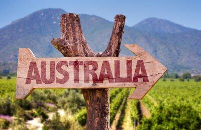 Fototapeta Australia drewniany znak z winnicy tle