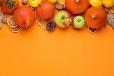 Fototapeta Autumn composition with pumpkins on color background