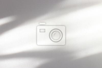 Fototapeta background of organic shadow over white textured wall