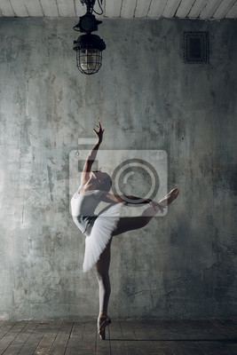 Fototapeta Ballerina female. Young beautiful woman ballet dancer, dressed in professional outfit, pointe shoes and white tutu.