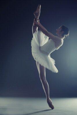 Fototapeta Ballerina pokazano podział