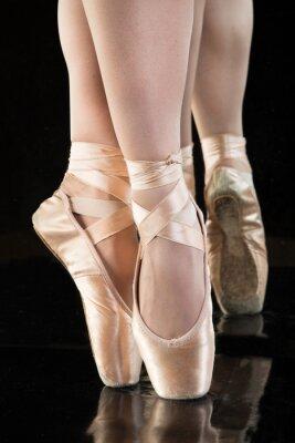 Fototapeta Ballett  - Beine einer Ballerina