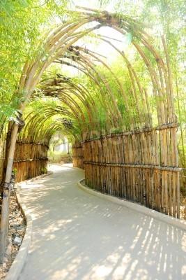 Fototapeta Bambus sposób