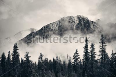 Fototapeta Banff park narodowy mgłowe gory i las w Canada.