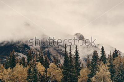 Fototapeta Banff park narodowy mgłowe góry i las w Kanada.