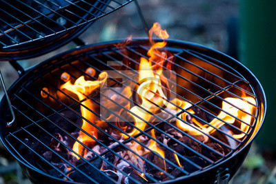 Fototapeta Barbecue fire with round grill. Food preparing concept with bbq fire on grill