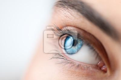 Fototapeta Beautiful human eye close-up. Young Woman Blue one eye macro shoot. Macro Closeup eye looking up, isolated on white background. Eyelashes, eyebrows closeup