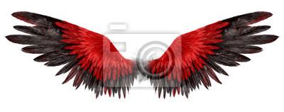 Fototapeta Beautiful magic red black wings drawn with watercolor effect