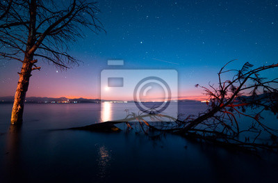 Beautiful night landscape, trees in the water and moonset over the lake. Sevan, Armenia.