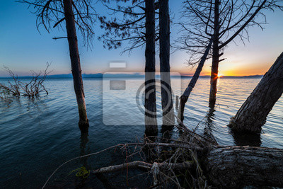 Beautiful night landscape, trees in the water and sunset over the lake. Sevan, Armenia.
