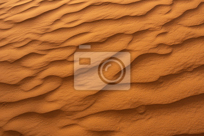Fototapeta Beautiful sand dunes in the Sahara desert.