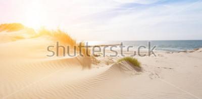 Fototapeta Beautiful sand dunes on the North Sea coast in Renesse, Zeeland, Holland
