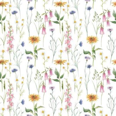 Fototapeta Beautiful seamless floral pattern with hand drawn watercolor gentle wild field flowers cornflower. Stock illuistration.
