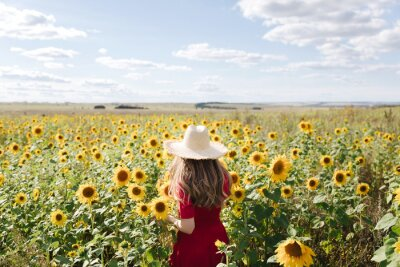 Fototapeta Beautiful young woman in red dress and a straw hat is standing against a yellow field of sunflowers. Summer time, cottagecore concept. Back view
