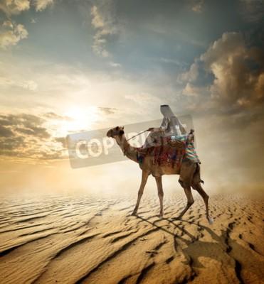 Fototapeta Beduin przejażdżki na wielbłądzie przez pustynię piaszczystą
