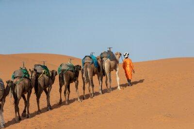 Berber man in Sahara Desert during sunset, Merzouga, Morocco