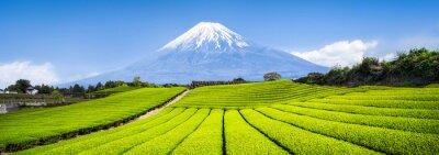 Fototapeta Berg Fuji i Teefelder w Japonii